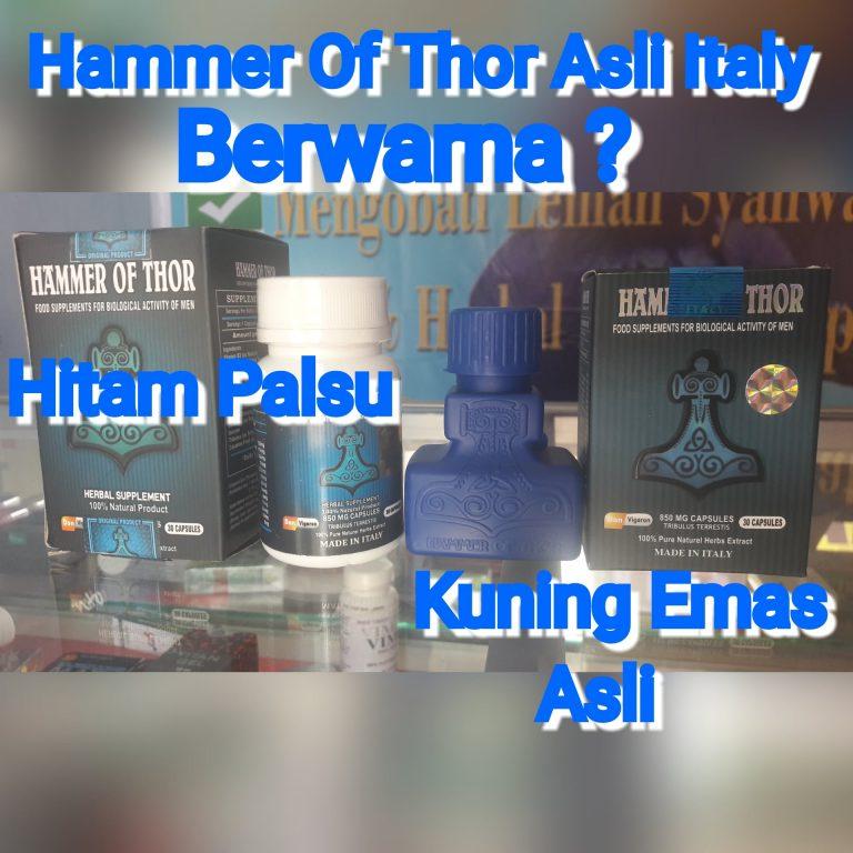 hammer of thor asli dan palsu
