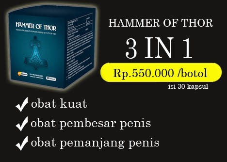 harga hammer of thor